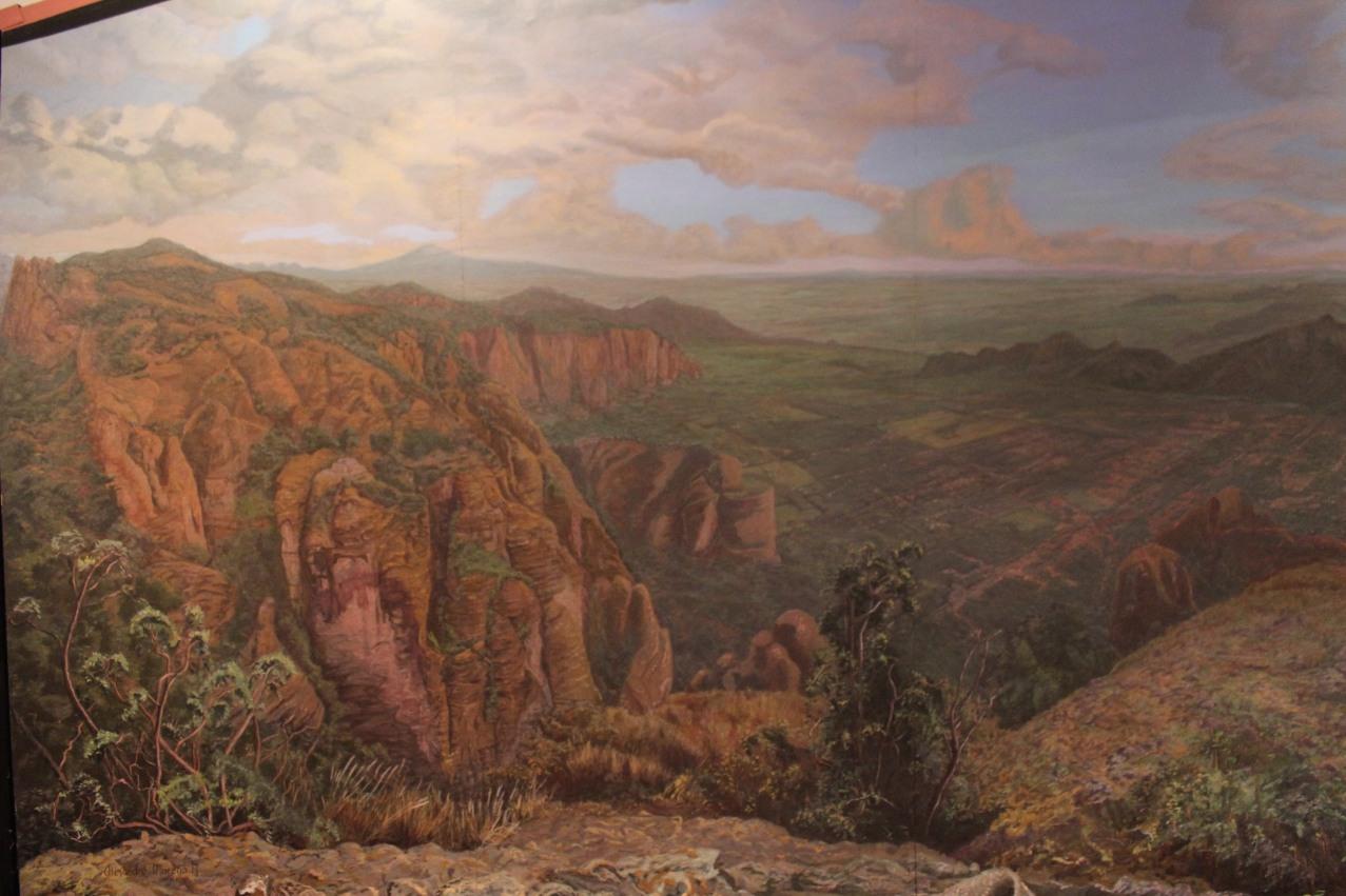 IMG_1878
