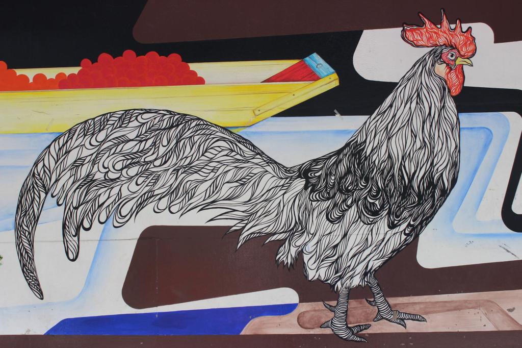 th_el gallo