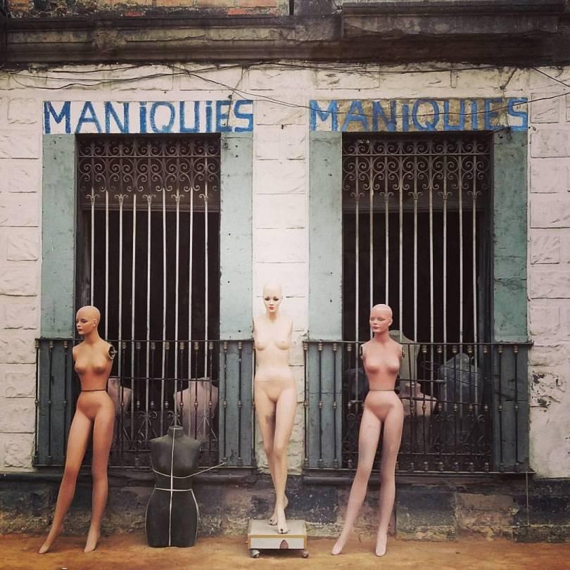 maniquies